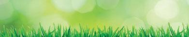 impianti-aspirazione-biomasse